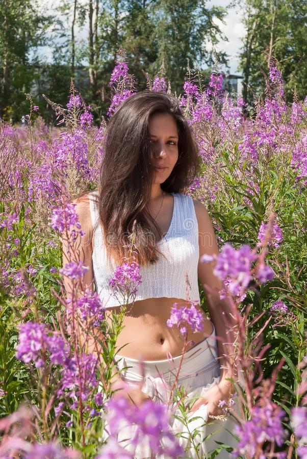 草甸的可爱的女孩 免版税库存图片