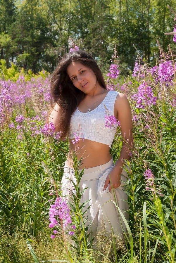 草甸的可爱的女孩 库存照片