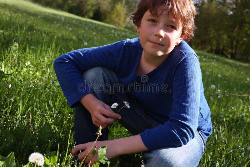 草甸的男孩 库存照片