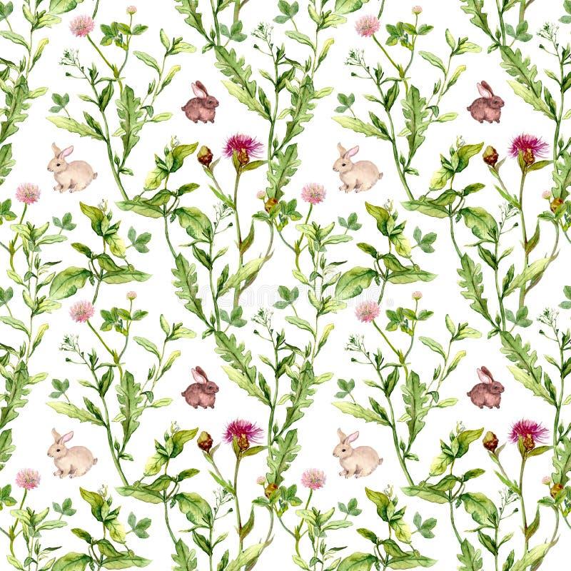 草甸花,微小的兔子 无缝的模式 水彩 免版税库存照片