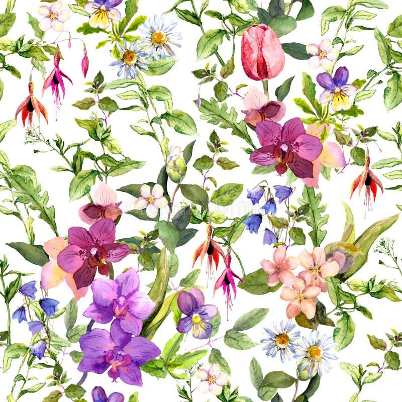 草甸花,狂放的草本 花卉无缝的墙纸 时尚设计的水彩 库存例证