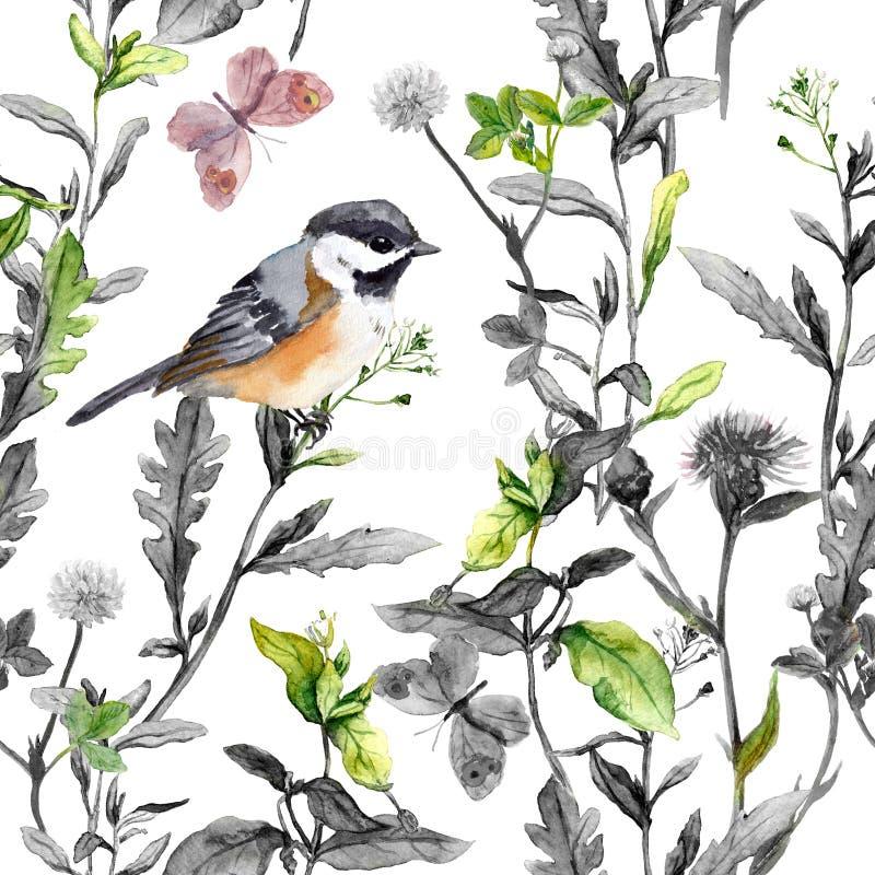 草甸花,鸟,蝴蝶 无缝的花卉样式,黑白的颜色 水彩 皇族释放例证