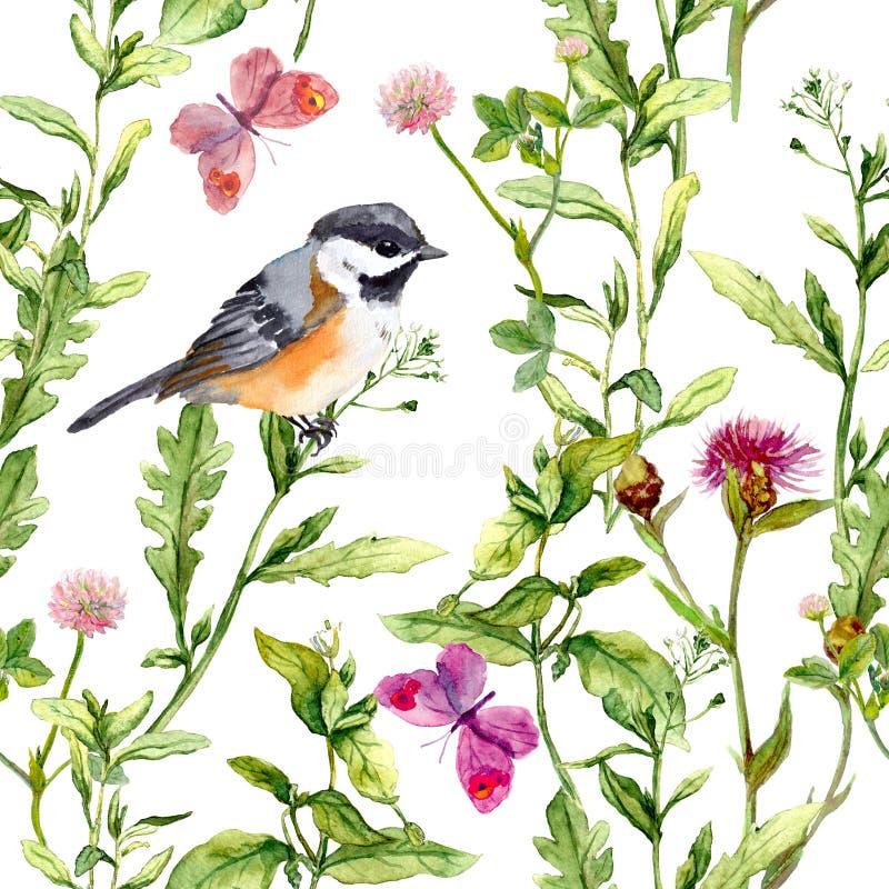 草甸-花、蝴蝶、鸟和草本 无缝的水彩花卉样式 库存例证