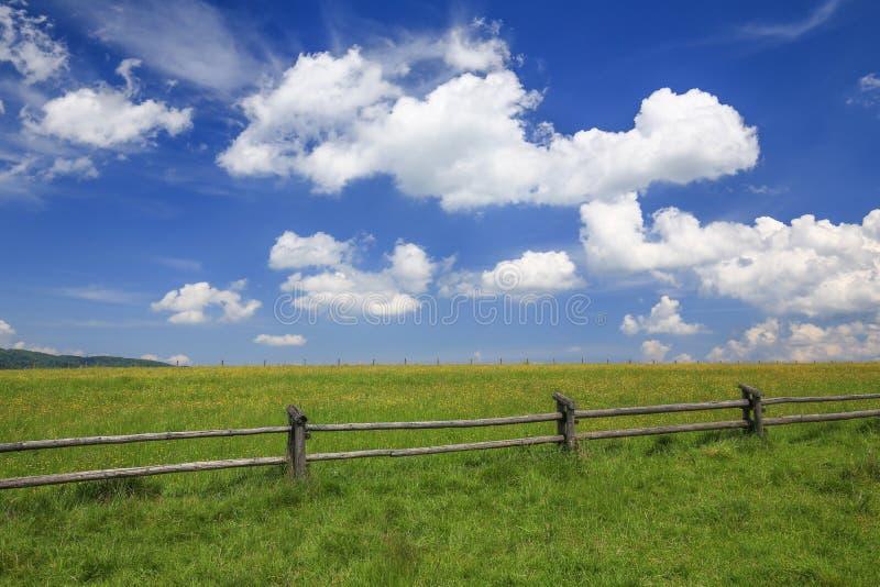 Download 草甸/风景的风景看法 库存图片. 图片 包括有 本质, 种秣草地, 视图, 草甸, 草原, 科学, 预留 - 72357893