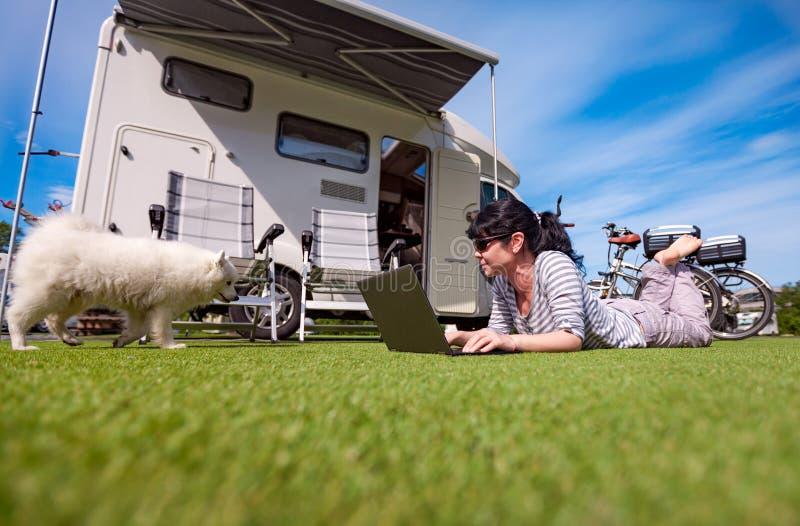 草的妇女与看膝上型计算机的狗 免版税库存图片