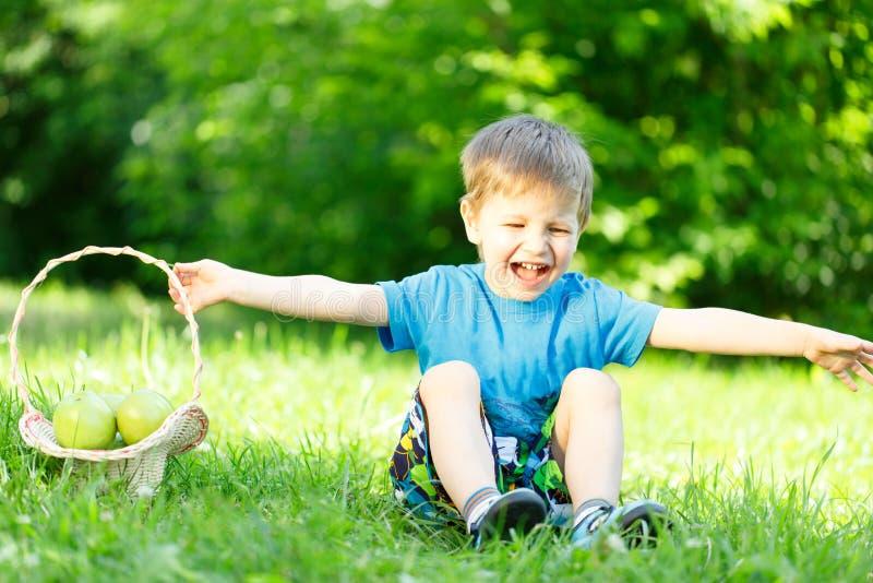草的小男孩与苹果篮子  库存照片