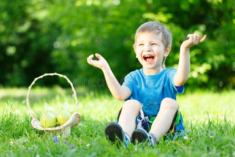 草的小男孩与苹果篮子  库存图片
