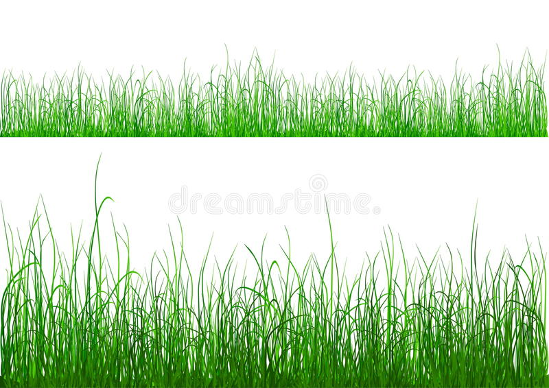 草绿色查出的白色 向量例证