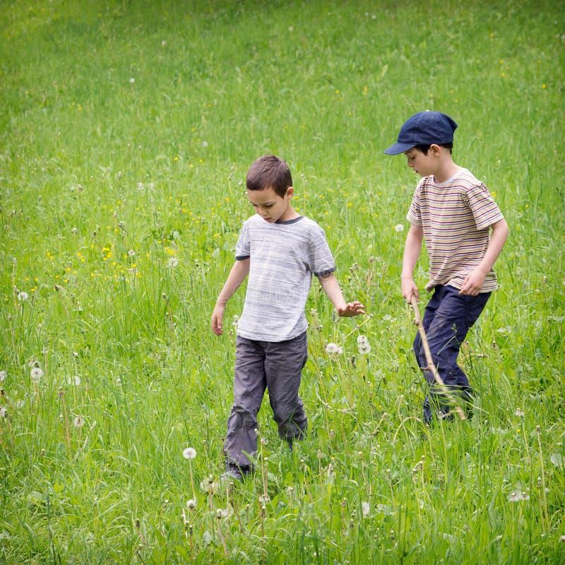 草草甸的孩子 免版税图库摄影