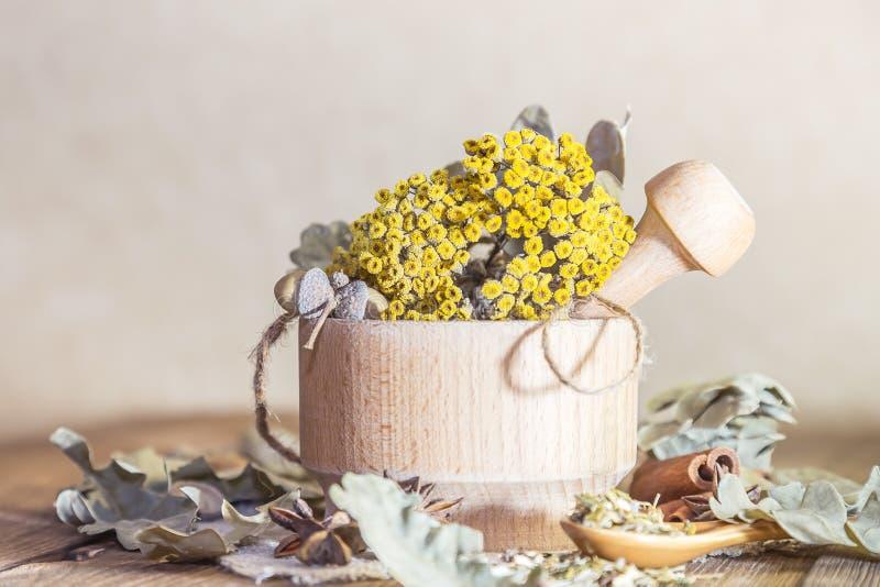 草药、同种疗法、医药草本的汇集茶的和医学 干艾菊花和橡木叶子在a 图库摄影