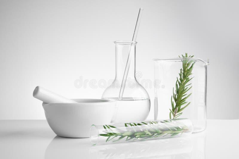 草药自然有机和科学玻璃器皿 库存照片