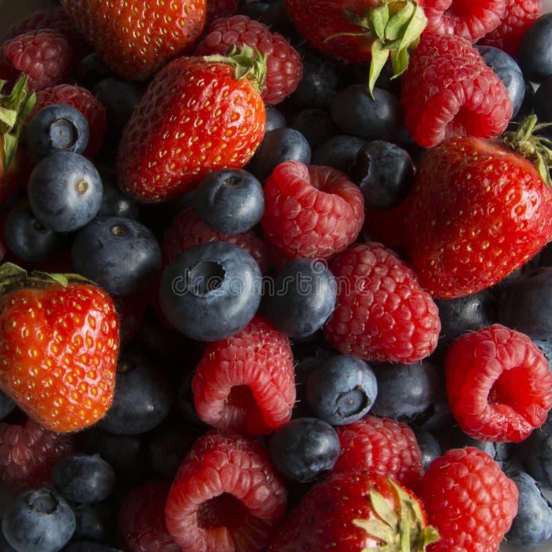 草莓、莓和蓝莓服务  库存照片