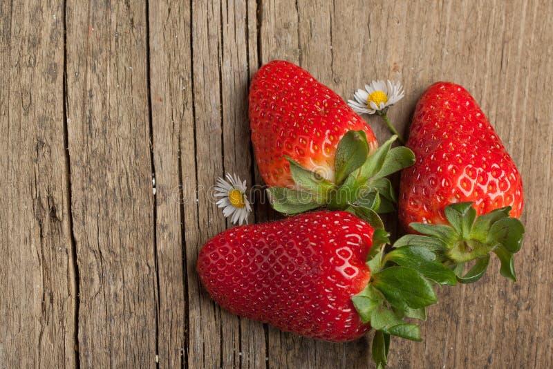 草莓三 图库摄影