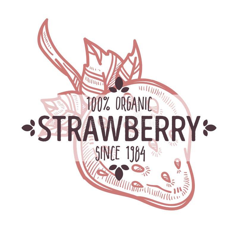 草莓与在有机农厂食物上写字的被隔绝的象 向量例证