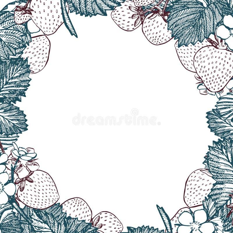 草莓分支  农夫市场菜单设计 有机食品海报 葡萄酒手拉的剪影传染媒介例证 皇族释放例证