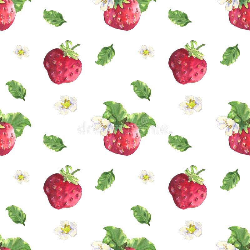 草莓和花纹花样 皇族释放例证