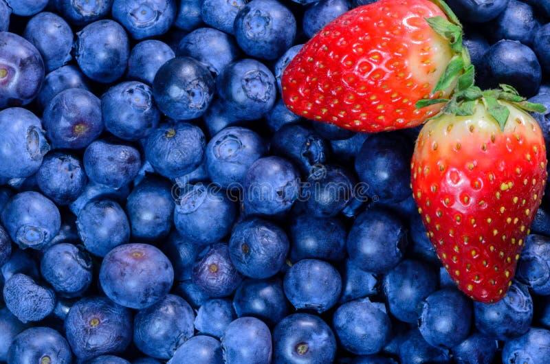草莓和蓝莓 免版税库存照片