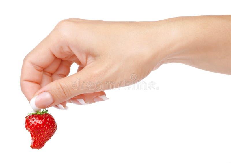 草莓在被隔绝的妇女的手上 免版税库存图片