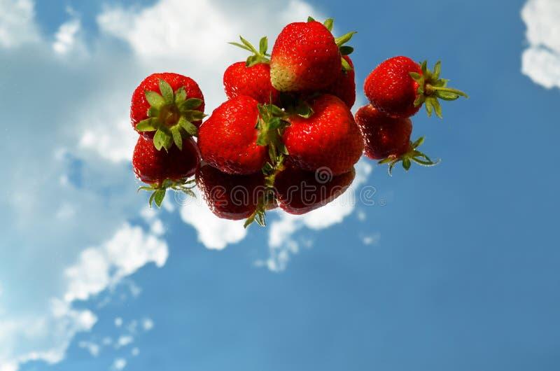 草莓在镜子被反射以在天空的云彩为背景 库存图片