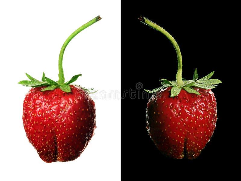 草莓对 库存照片