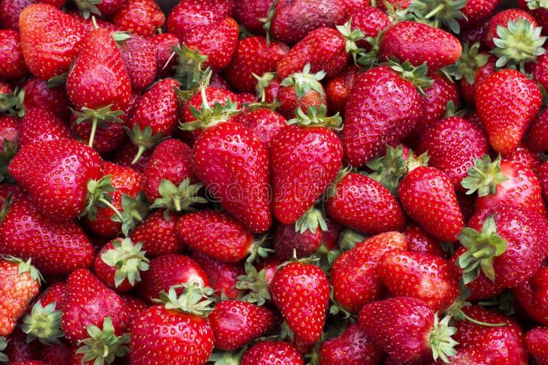草莓心脏形状  库存图片