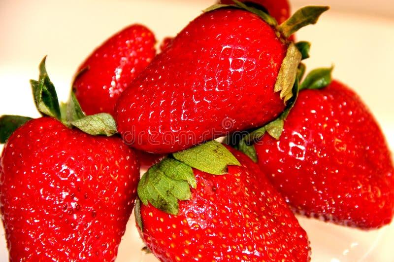 草莓成熟明亮的红色 库存照片
