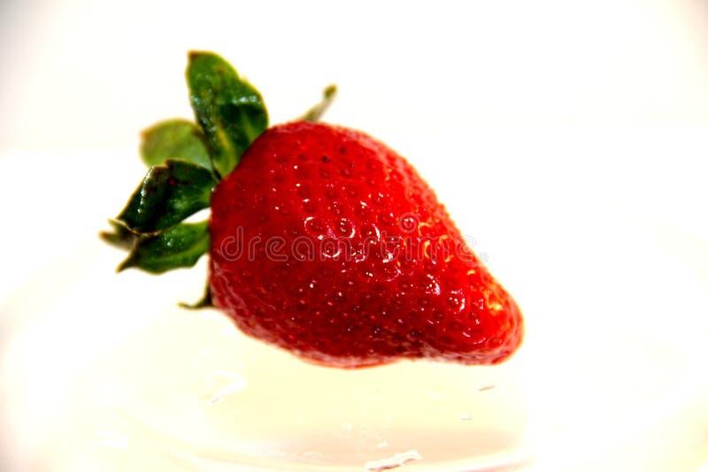 草莓成熟明亮的红色 免版税图库摄影