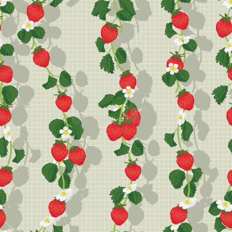 草莓果子垂直的无缝的样式 库存例证