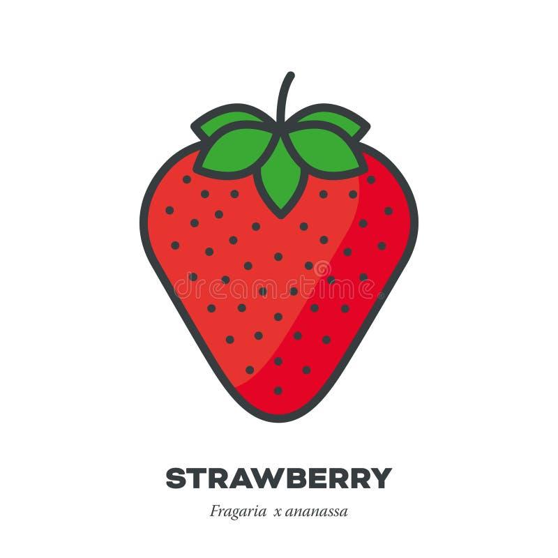 草莓果子象,填装了概述样式传染媒介 向量例证