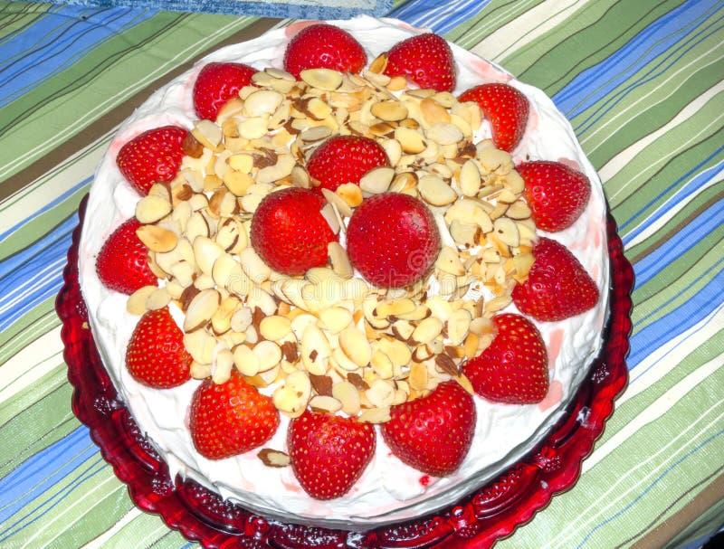 草莓椰子cak 库存图片