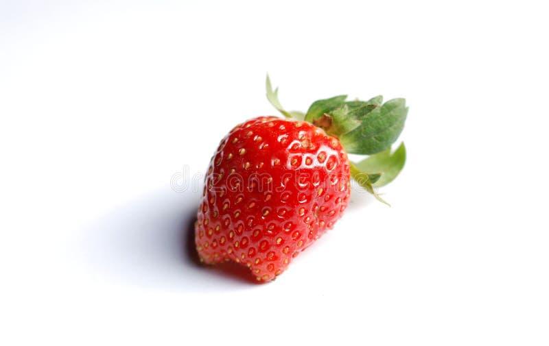 草莓白色背景 库存照片