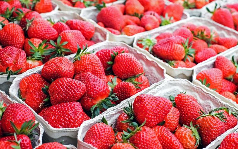 草莓脆饼节日 库存图片