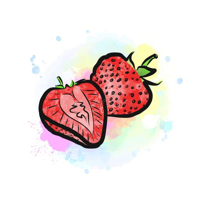 草莓色的图画  皇族释放例证