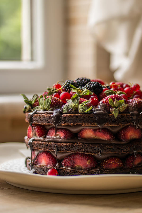 草莓蛋糕用黑莓、桑树和黑暗的巧克力 免版税库存照片