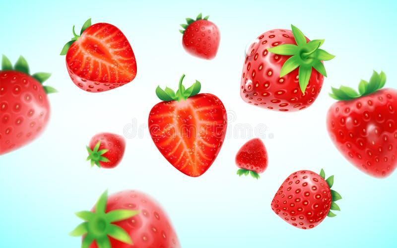 草莓集合、详细的现实成熟新鲜的草莓与一半和绿色叶子有在a隔绝的水滴的 向量例证