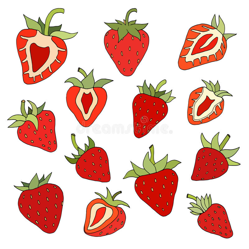 Download 草莓集合 向量例证. 插画 包括有 健康, 设计, 果子, 图画, 收获, 五颜六色, 分级显示, 新鲜 - 59103401
