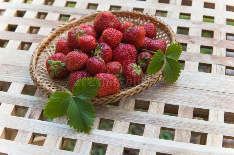 Download 草莓 库存照片. 图片 包括有 宏指令, 问题的, 户外, 绿色, 丰富的, 食物, 野餐, 有机, browne - 15695780