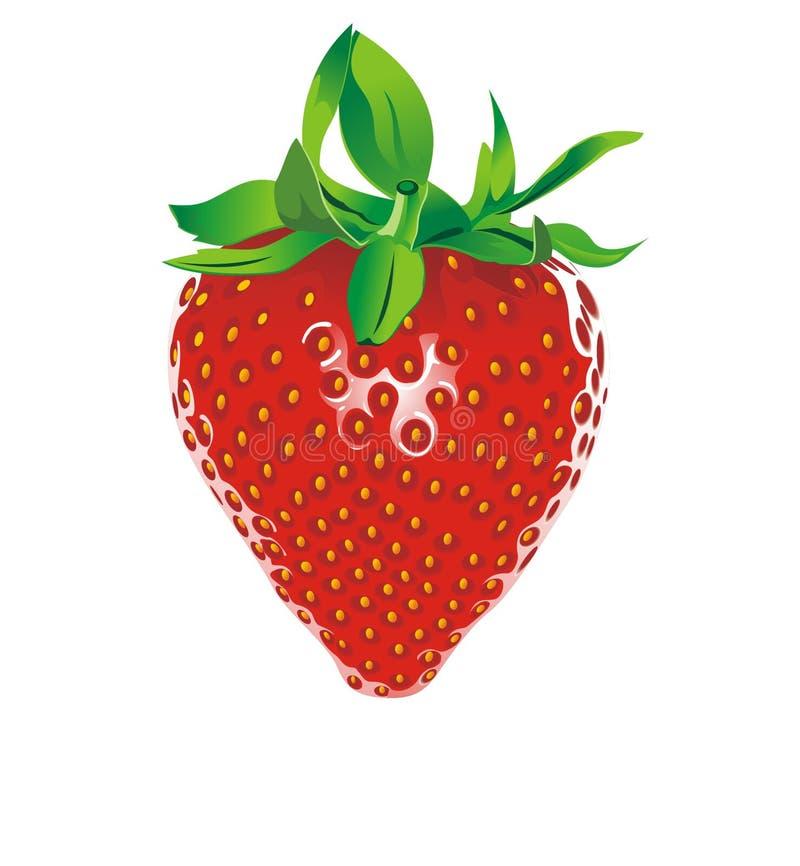 草莓 库存例证
