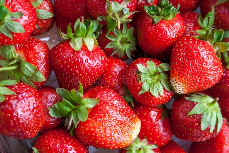 Download 草莓 库存照片. 图片 包括有 从事园艺, 复制, 类似, 特写镜头, 背包, 收集, 点心, 食物, 生气勃勃 - 62538644