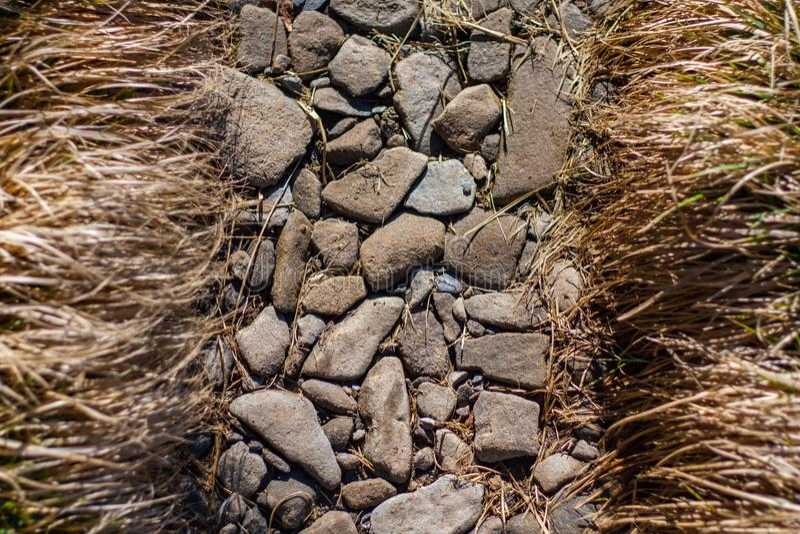 草被排行的岩石足迹,细节的阿巴拉契亚足迹关闭 免版税图库摄影
