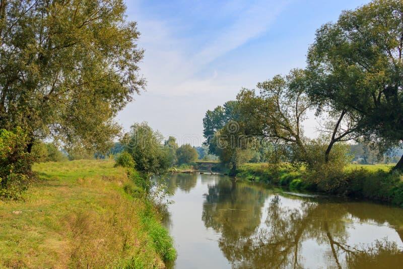 草覆盖的银行背景的小河反对蓝色的 免版税图库摄影