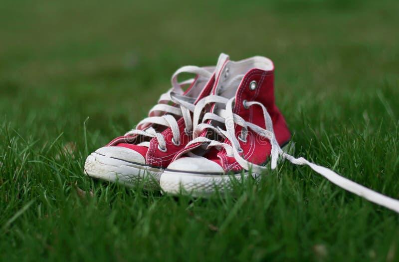 草运动鞋 免版税库存图片