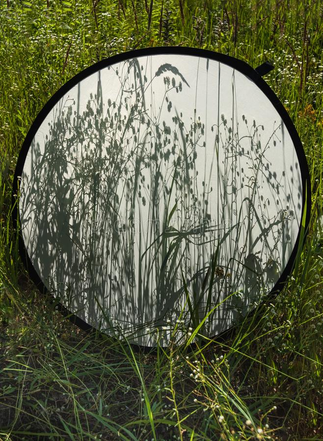 草阴影背景在散开照片反射器的在领域草的背景 图库摄影