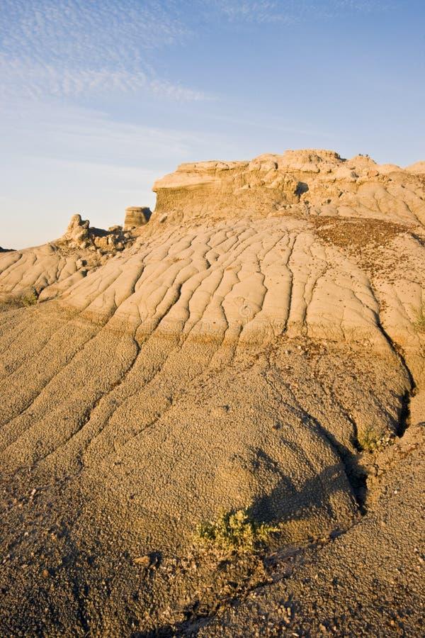 荒地国家公园罗斯福西奥多 免版税库存照片