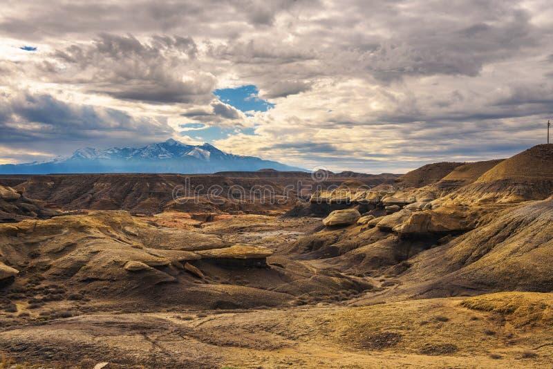 荒地在有多雪的山的犹他 免版税图库摄影