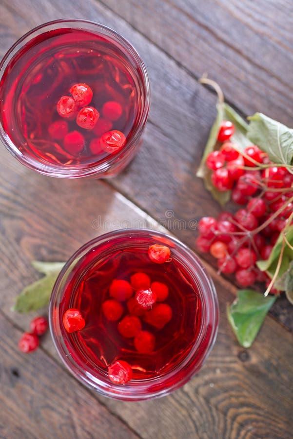 荚莲属的植物饮料 免版税图库摄影