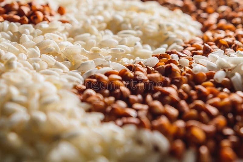 荞麦和白米背景纹理、荞麦被分离的五谷和米特写镜头 免版税库存照片