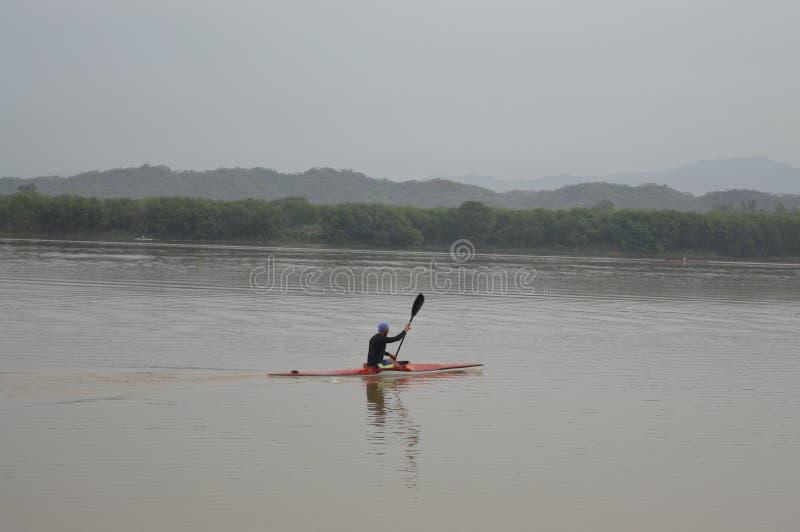 荡桨在昌迪加尔City湖,印度 库存图片