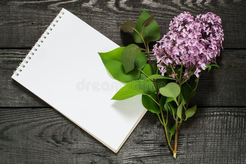 药用植物淡紫色紫丁香属植物和笔记本 库存照片