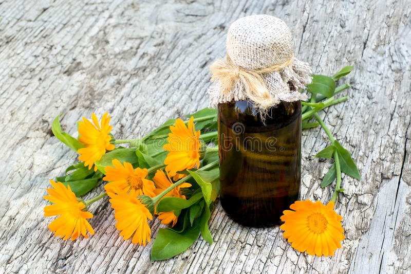药用植物金盏草和配药瓶 免版税库存照片